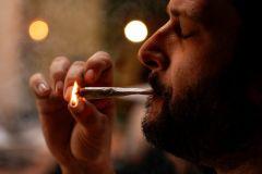Marijuana State Cannabis States Legalization Tax