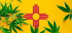 Session Criminal Justice Legalization Cannabis Special Session Grisham
