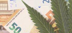 Cannabis Sales Bdsa Cagr Spending U S
