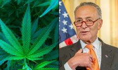 Marijuana Bill Legalization White House Schumer New York