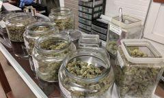 New Jersey Marijuana Bill State Cannabis Bills