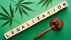 New Mexico Law Norml State Marijuana Governor Democrat Gov Michelle Lujan Grisham