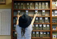 Marijuana People Arizona Jobs Industry Cannabis